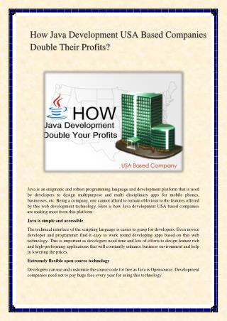 How Java Development USA Based Companies Double Their Profits?