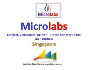Microlabs-Navision System-Microsoft Dynamics NAV