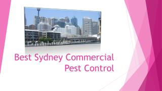 Best Sydney Commercial Pest Control