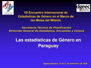 VII Encuentro Internacional de Estad sticas de G nero en el Marco de las Metas del Milenio