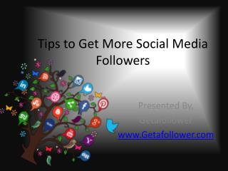 Tips to Get More Social Media Followers