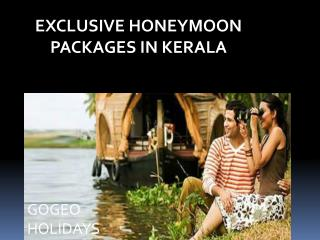 Exclusive honeymoon packages in Kerala