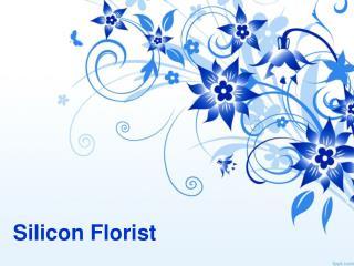 Silicon florist bangalore