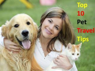 Pet Travel tips