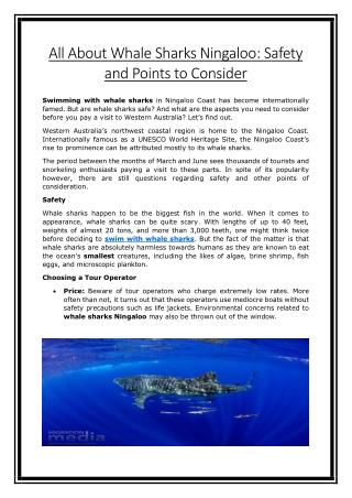 All About Whale Sharks Ningaloo: Safety and Points to Consider