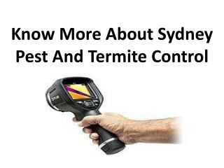 Know More About Sydney Pest And Termite Control