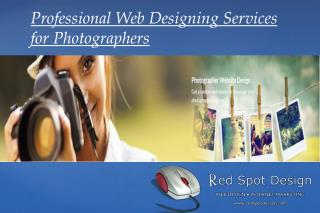 Professional Web Designing Services for Photographers