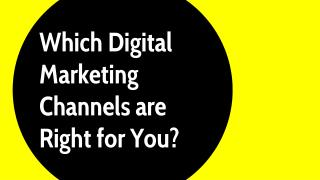 Which digital marketing channels are right for you?