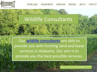 Wildlife Consultants