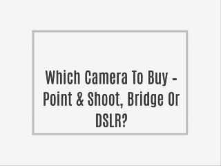 Which Camera To Buy – Point & Shoot, Bridge Or DSLR?