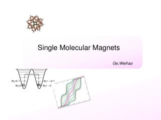 Single Molecular Magnets