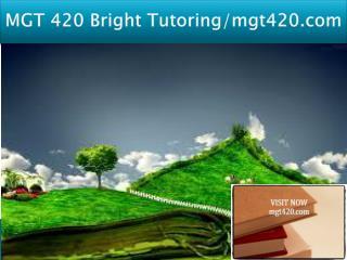 MGT 420 Bright Tutoring/mgt420.com