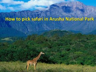 How to pick safari in Arusha National Park