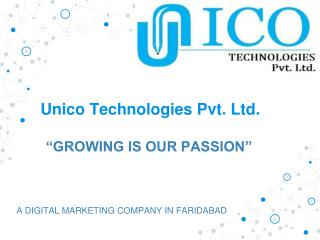 digital marketing company in faridabad