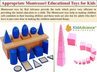 Appropriate Montessori Educational Toys for Kids