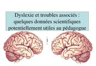 Dyslexie et troubles associ s : quelques donn es scientifiques potentiellement utiles au p dagogue