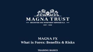 Magna Fx Reviews - Forex Trading Basics