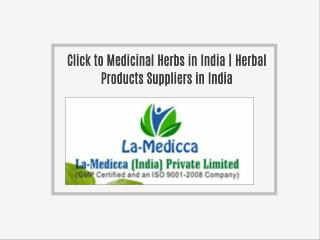 Medicinal Herbs in India | Herbal Products Suppliers in India