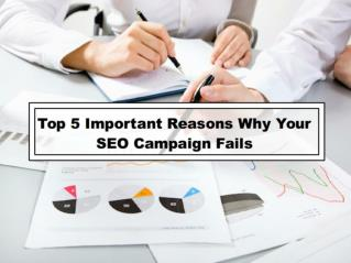 Top 5 Important Reasons Why Your SEO Campaign Fails
