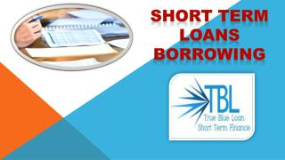 Short Term Loans Borrowing