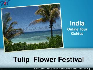 Tulip flower Garden festival India