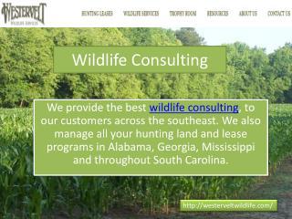 Wildlife Consulting