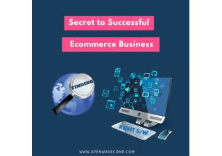 What makes Success to Ecommerce Business?