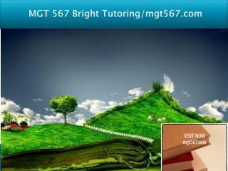 MGT 567 Bright Tutoring/mgt567.com