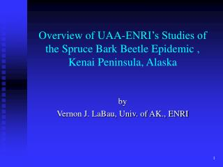 Overview of UAA-ENRI s Studies of  the Spruce Bark Beetle Epidemic , Kenai Peninsula, Alaska