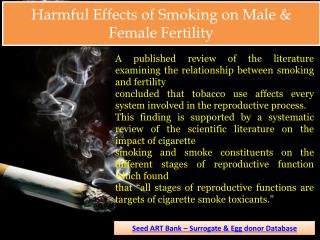 Harmful Effects Of Smoking on Male & Female Fertility