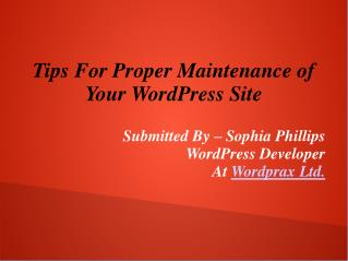 Tips For Proper Maintenance of Your WordPress Site