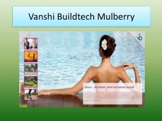 Vanshi Buildtech Mulberry