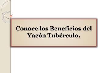 Conoce los Beneficios del Yacón Tubérculo.