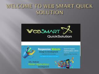 Web Smart Quick Solution