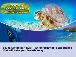 Hawaii Eco Divers.ppt