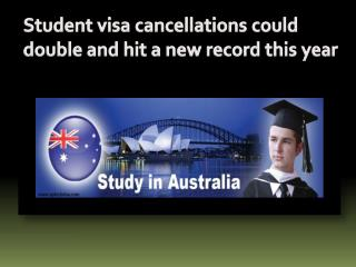 Student visa cancellations could double and hit a new record this year