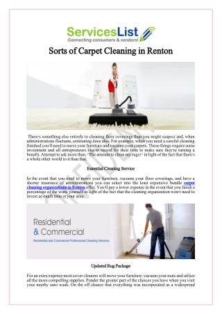 Sorts of Carpet Cleaning in Renton