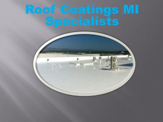 Roof Coatings MI Specialists