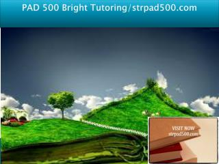PAD 500 Bright Tutoring/strpad500.com