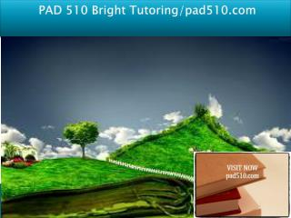 PAD 510 Bright Tutoring/pad510.com