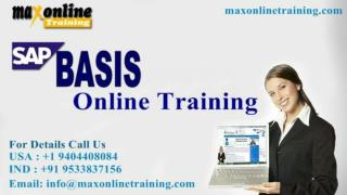 Sap basics online training from basic level