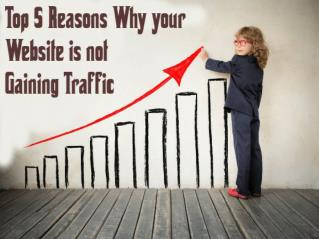 5 Reason your Website is not gaining good traffic