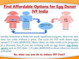 Find Affordable Options for Egg Donor IVF India