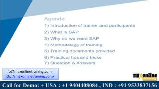 What is sap? who use sap all around the world?