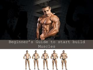 Beginner's Guide to start build Muscles