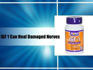 Igf 1 can heal damaged nerves