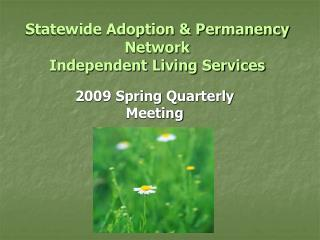 Statewide Adoption  Permanency Network  Independent Living Services