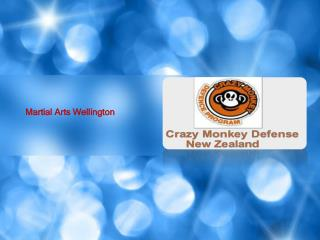 Best Self Defense Wellington Training Program