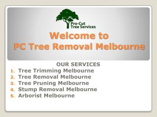 Stump Removals Melbourne