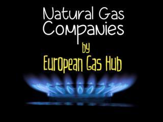 Natural Gas Companies by European Gas Hub